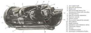Vostok Dog Capsule
